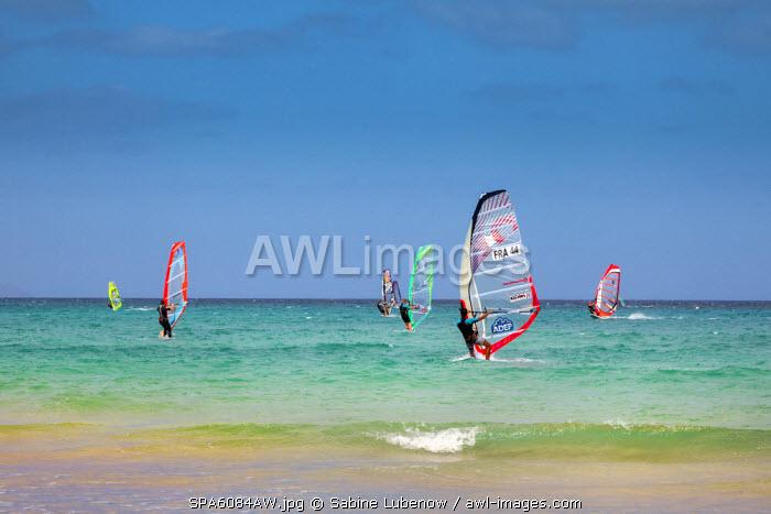 Wind surfer, Playa de Sotavento, Fuerteventura, Canary Islands, Spain