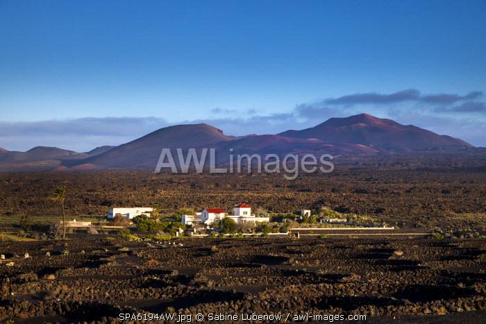 Finca, wine region La Geria, national park Timanfaya in background, Lanzarote, Canary Islands, Spain
