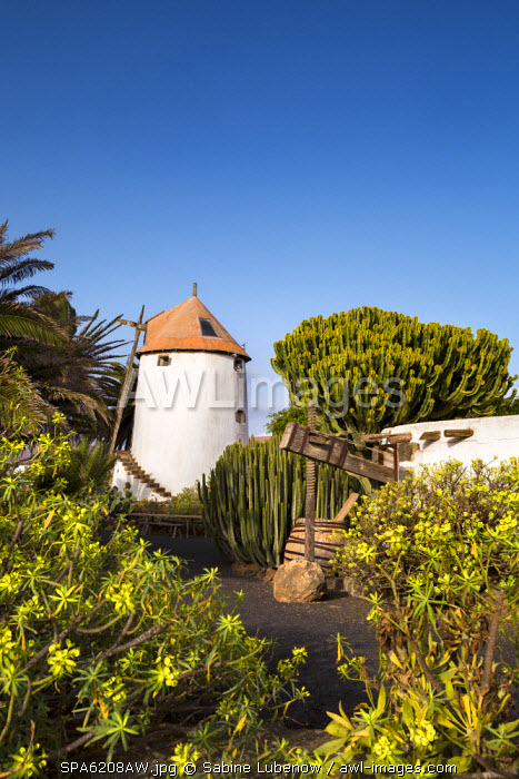 Windmill, agriculture museum, Museo Agricola El Patio, Tiagua, Lanzarote, Canary Islands, Spain