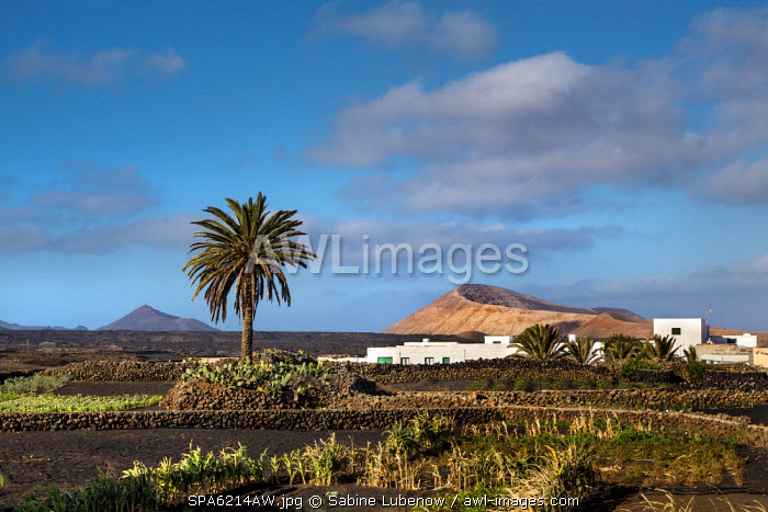 Village Mancha Blanca in front of Caldera Blanca, Lanzarote, Canary Islands, Spain