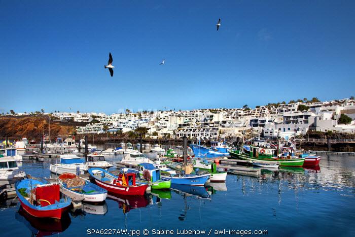 Fishing boats, harbour La Tinosa, Puerto del Carmen, Lanzarote, Canary Islands, Spain