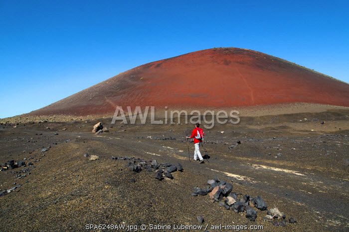 Hiker in front of Caldera Colorada, Parque de los Volcanes, Lanzarote, Canary Islands, Spain