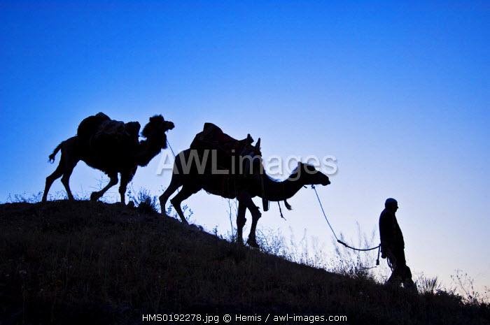 Turkey, Central Anatolia, Cappadocia, Uchisar village, caravaneer Durmus G�leser