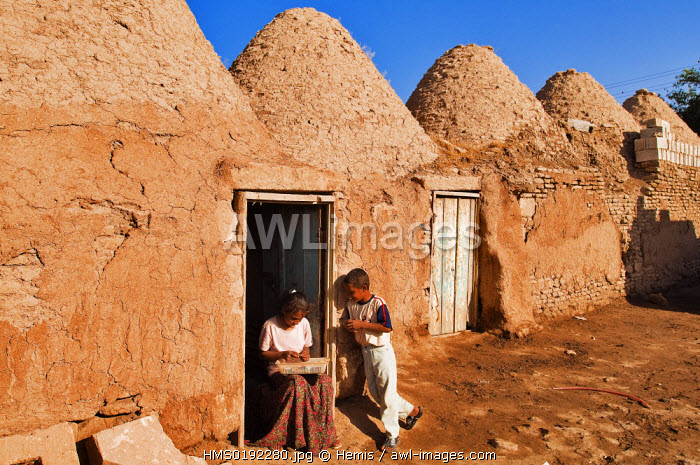 Turkey, Eastern Anatolia, village of Harran known for its bee-hive houses (3rd century)