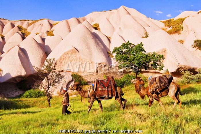 Turkey, Central Anatolia, Cappadocia, listed as World Heritage by UNESCO, Uchisar village, caravaneer Durmus G�leser