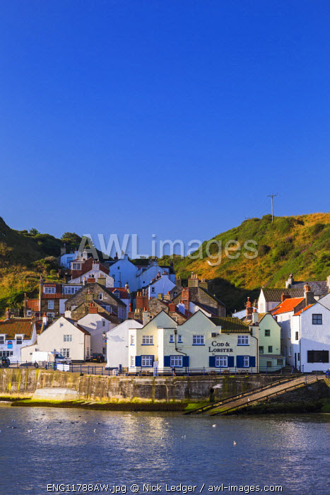 United Kingdom, England, North Yorkshire, Staithes. Early morning in the harbour.
