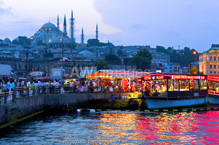 Turkey, Istanbul, Eminonu District, Emninonu harbour over the Golden Horn Strait, in the background Suleymaniye Camii (Suleymaniye Mosque) in the historical centre listed as World Heritage by the UNESCO