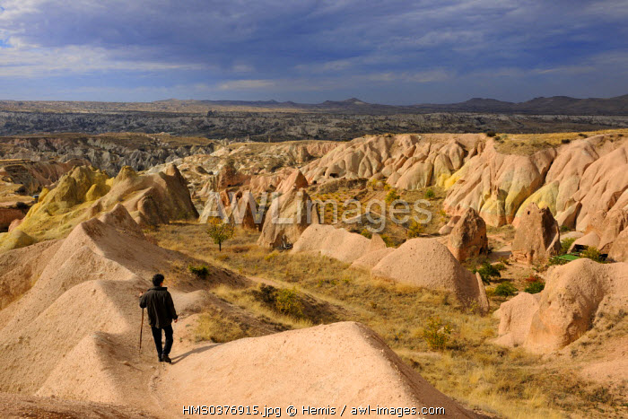 Turkey, Central Anatolia, Nevsehir Province, Cappadocia listed as World Heritage by UNESCO, Kizil Cukur (the Red Valley), vineyards on the Western side of Ak Tepe Massif near Cavusin