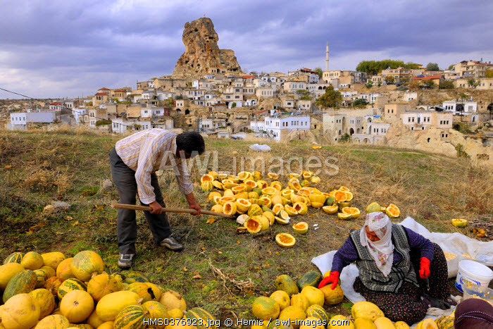 Turkey, Central Anatolia, Nevsehir Province, Cappadocia listed as World Heritage by UNESCO, Ortahisar, collecting watermelon seeds