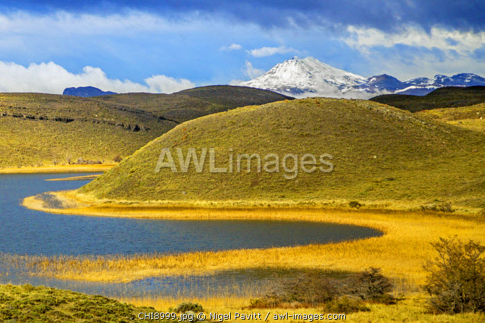 Chile, Torres del Paine, Magallanes Province. An attractive scene of the Patagonian Steppe in Torres del Paine National Park.