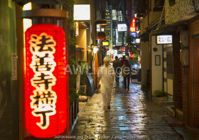 Hozen-ji Yokocho alleyway at night, Dotombori, Osaka, Kansai, Japan
