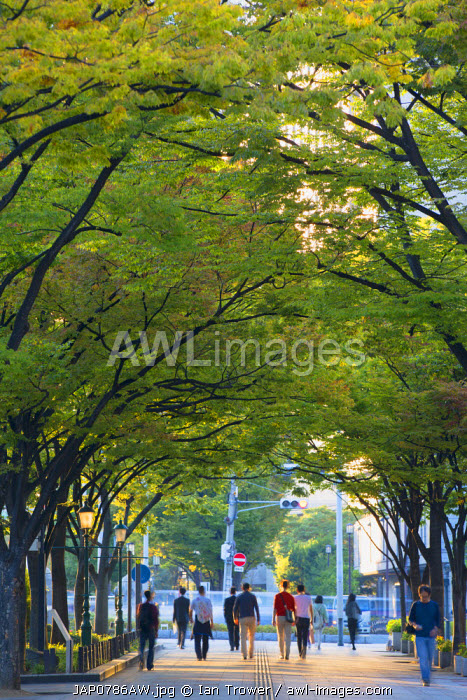 People walking through park on Naganoshima island, Osaka, Kansai, Japan