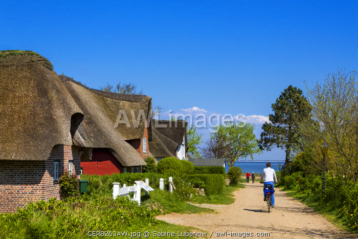 Thatched houses and cyclist, Nebel, Amrum Island, Northern Frisia, Schleswig-Holstein, Germany