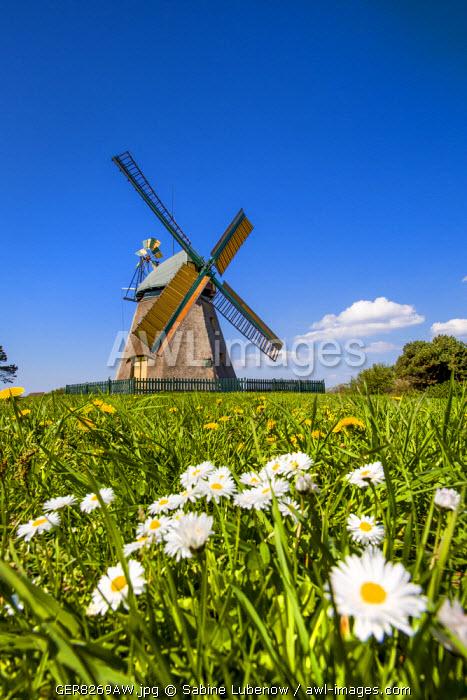 Windmill, Nebel, Amrum Island, Northern Frisia, Schleswig-Holstein, Germany
