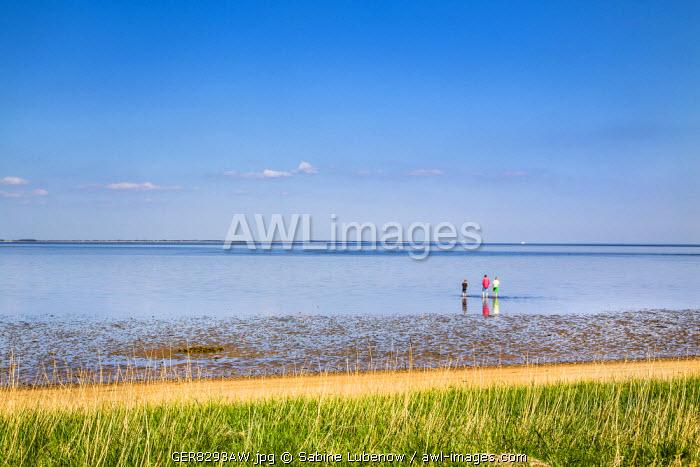 People at wadden sea, Amrum Island, Northern Frisia, Schleswig-Holstein, Germany