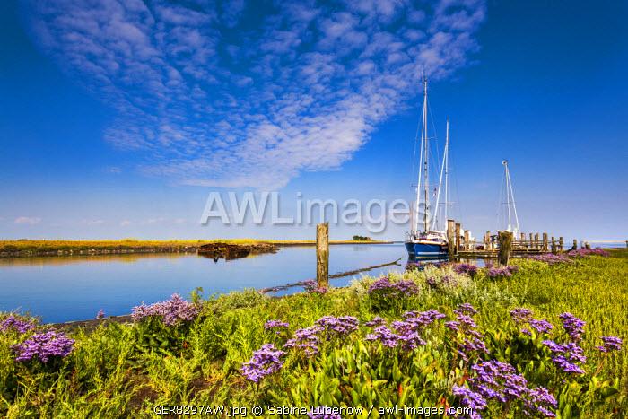 Marina, Hallig Langeness, Northern Frisia, Schleswig-Holstein, Germany