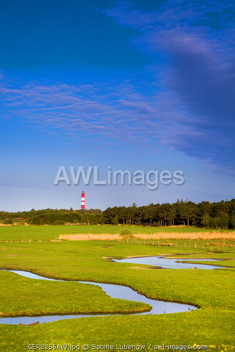 Salt marsh and lightroom, Amrum Island, Northern Frisia, Schleswig-Holstein, Germany