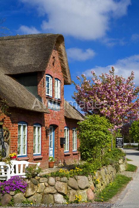 Thatched house, Amrum Island, Northern Frisia, Schleswig-Holstein, Germany