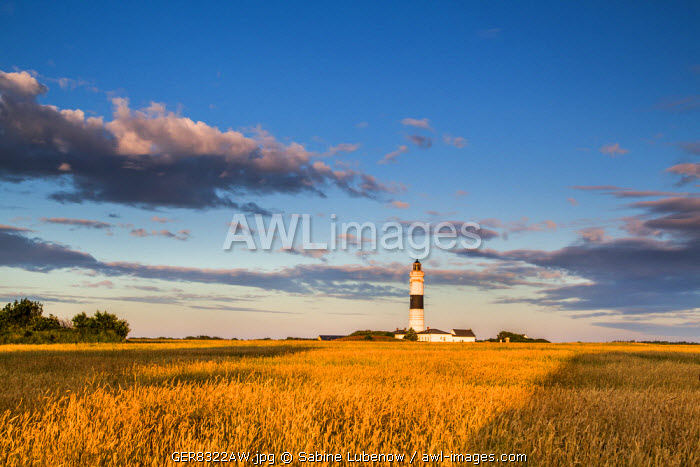 Lighthouse, Kampen, Sylt Island, Northern Frisia, Schleswig-Holstein, Germany