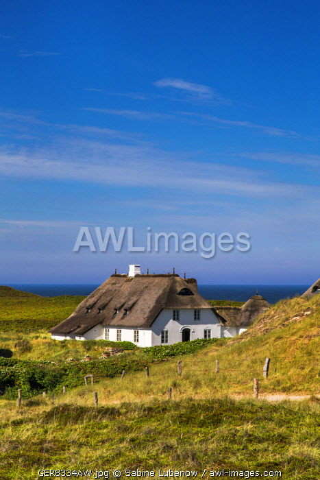 Thatched houses in the dunes, Kampen, Sylt Island, Northern Frisia, Schleswig-Holstein, Germany