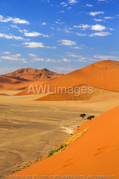 Africa, Namibia, Namib Desert, Sossusvlei. Veiw over the Sossusvlei landscape.