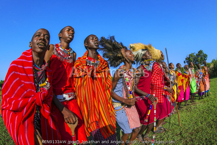 Africa, Kenya, Narok County, Masai Mara. Masai men and women dancing at their homestead.