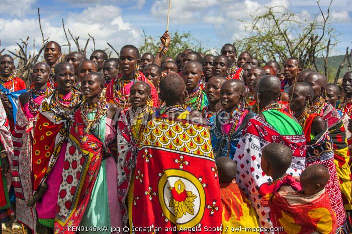 Africa, Kenya, Narok County, Masai Mara. Masai women dancing at their homestead.