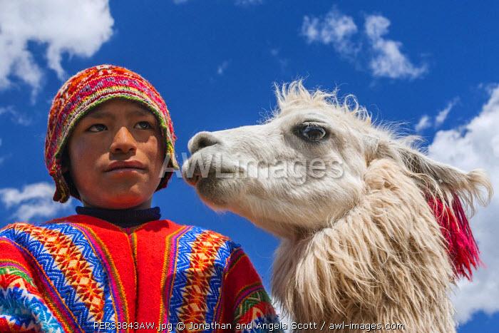 South America, Peru, Cusco. A young boy and his Llama.