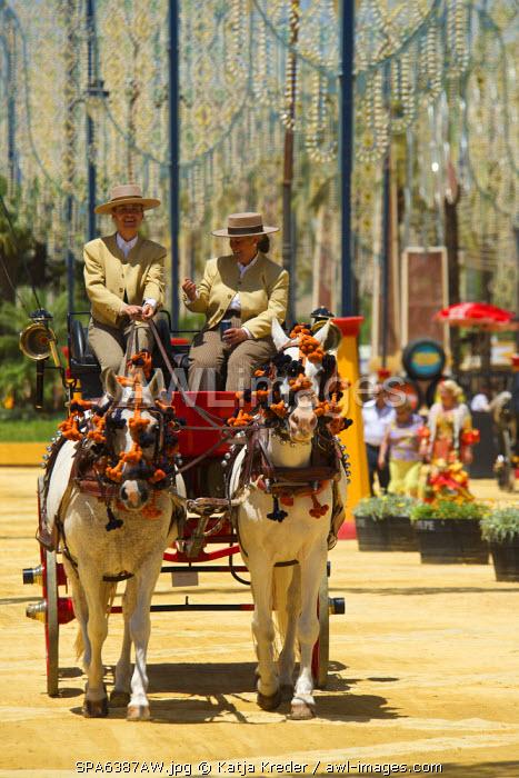 Horse-drawn carriage, Feria del Caballo in Jerez de la Frontera, Andalusia, Spain
