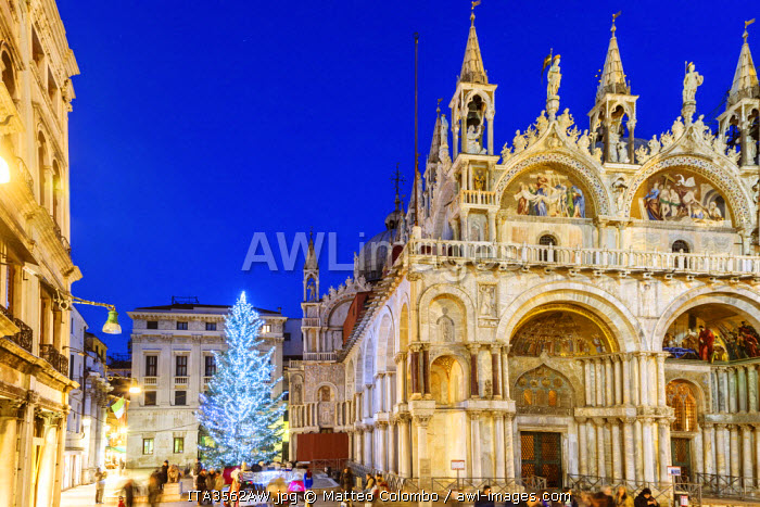 Italy, Veneto, Venice. Christmas tree in St Marks square near the cathedral, at dusk