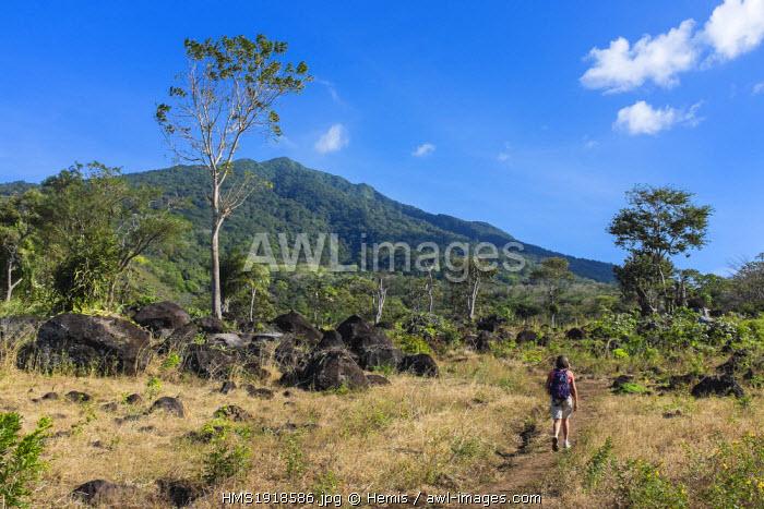 Nicaragua, Rivas department, Ometepe island, on lake Nicaragua (or lake Cocibolca), hiking to the volcano Maderas