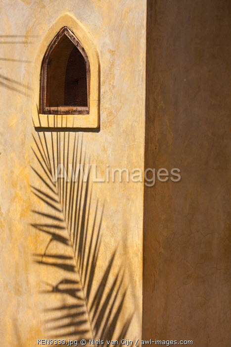 Kenya, Shaba National Park, Joy's Camp. Camp detail with palm frond shadow