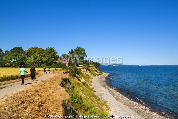 Hiker at cliff Brodtener Ufer, Niendorf, Baltic coast, Schleswig-Holstein, Germany