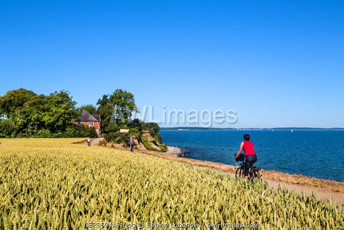 Cyclists at cliff Brodtener Ufer, Niendorf, Baltic coast, Schleswig-Holstein, Germany