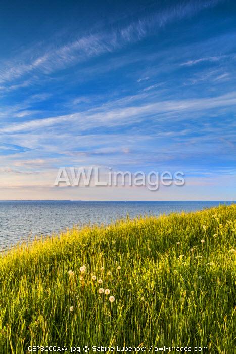 View from cliff Brodtener Ufer towards sea, Niendorf, Baltic coast, Schleswig-Holstein, Germany