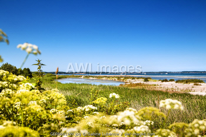 View from Laboe over the fjord,  Kiel fjord, Baltic coast, Schleswig-Holstein, Germany
