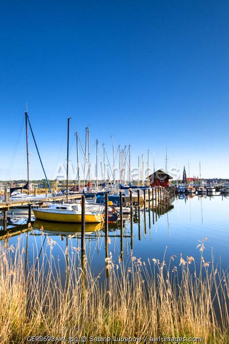 View over Schlei fjord towards Schleswig, Baltic coast, Schleswig-Holstein, Germany