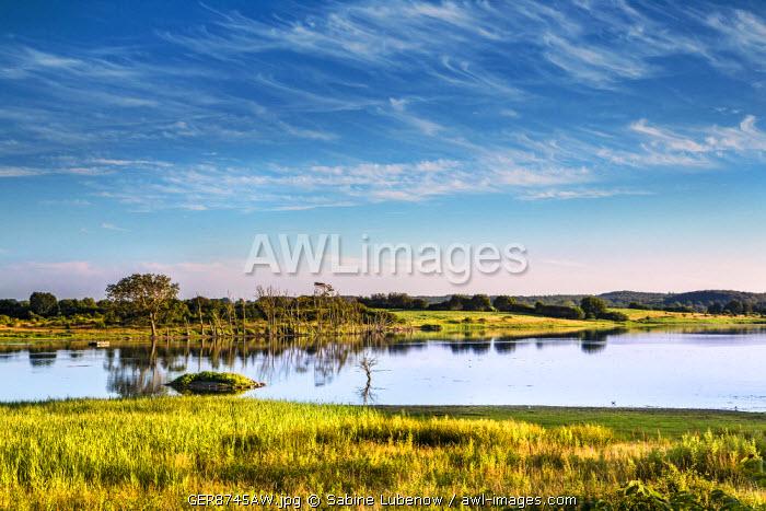 Holnis peninsula, Flensburg fjord, Baltic coast, Schleswig-Holstein, Germany
