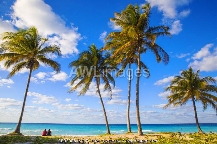 Cuba, Varadero, Couple sitting by Palm trees on Varadero beach