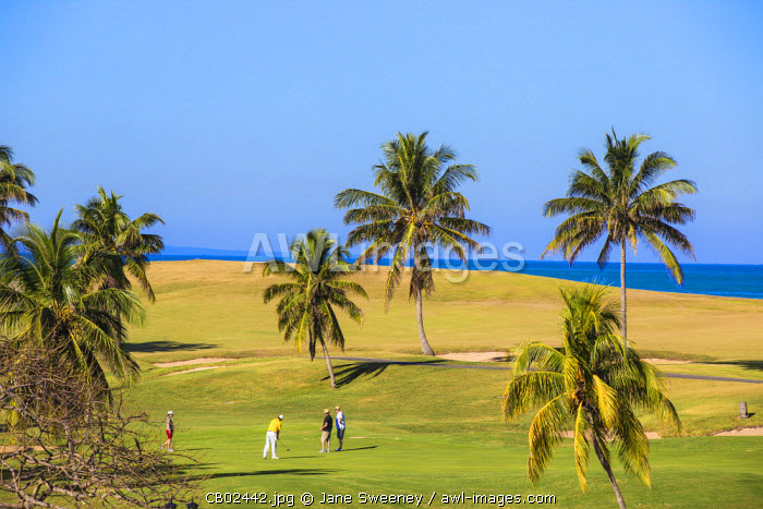 Cuba, Varadero, Men playing golf at Varadero Golf Course