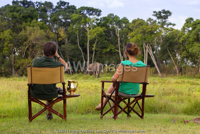 awl-images.com - Kenya / Kenya, Mara North Conservancy, Elephant Pepper Camp. A couple watch an enormous bull elephant from just outside their tent. MR.