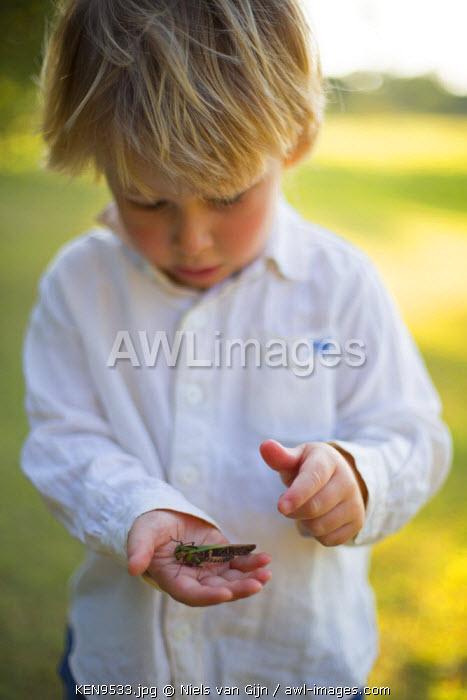 Kenya, Mara North Conservancy. A young explorer examines a cricket. MR.