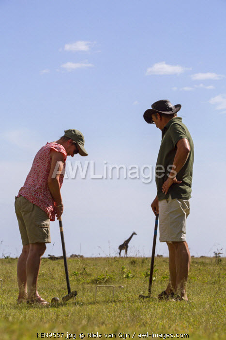 Kenya, Mara North Conservancy. A couple play croquet on the lawn, as a giraffe wanders past. MR.