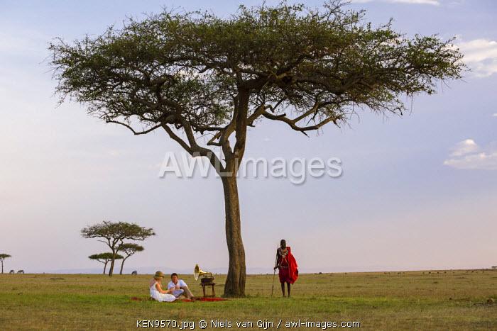Kenya, Mara North Conservancy. A newly-wed couple under an acacia tree, as a Maasai Warrior stands guard. MR.