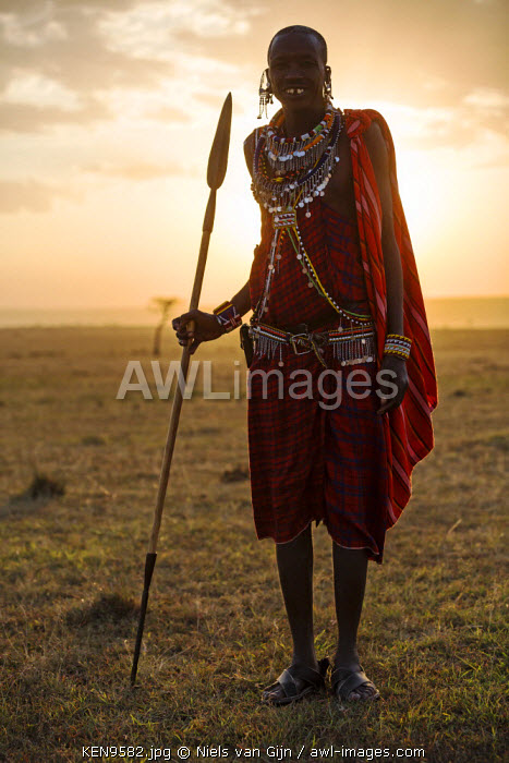Kenya, Mara North Conservancy. A Maasai Warrior at sunset. MR.