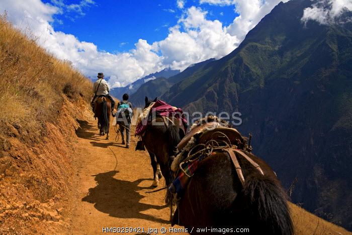 Peru, Cuzco Departement, travelling to the Inca site of Choquequirao through the valley of the Apurimac River through the Vilcabamba cordillera