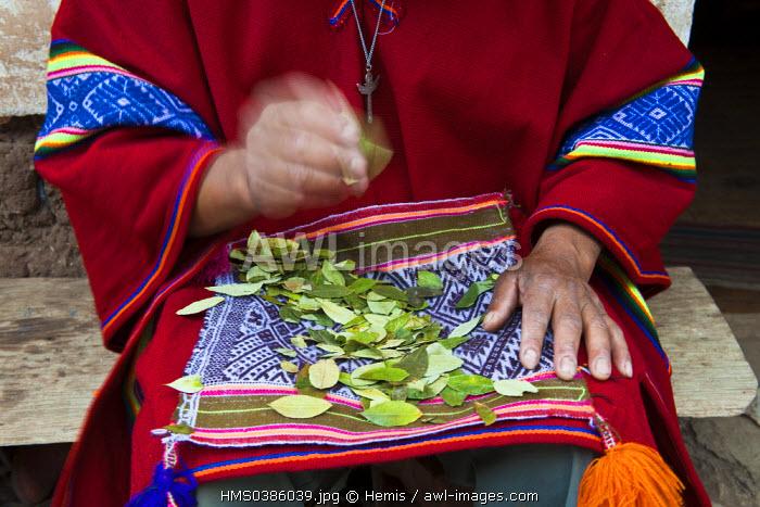 Peru, Cuzco province, Huasao, Pablo, shaman (curandero) officiating in the village, ranked tourist village mystic ceremony with coca leaves