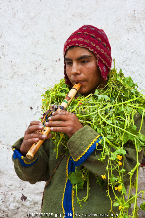 Peru, Cuzco Province, Huaro, young playing flute in traditional dress covered with plants for the corn feast, Sara Raymi