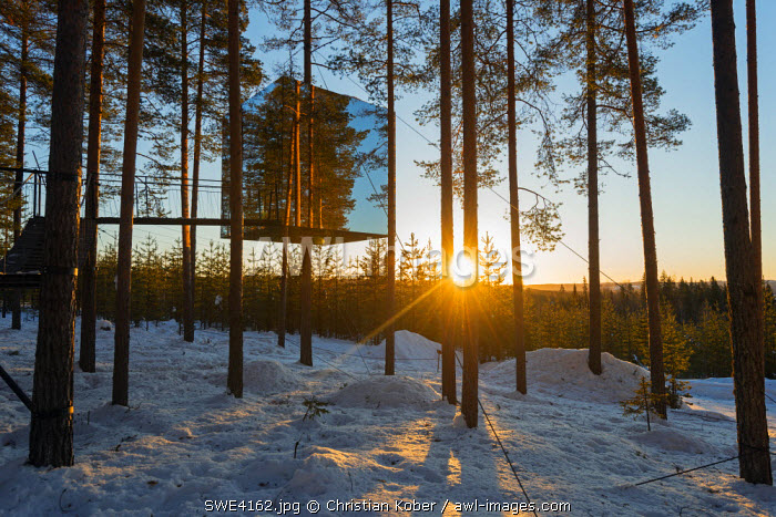 Arctic Circle, Lapland, Scandinavia, Sweden, The Tree Hotel, the Mirror Cube room