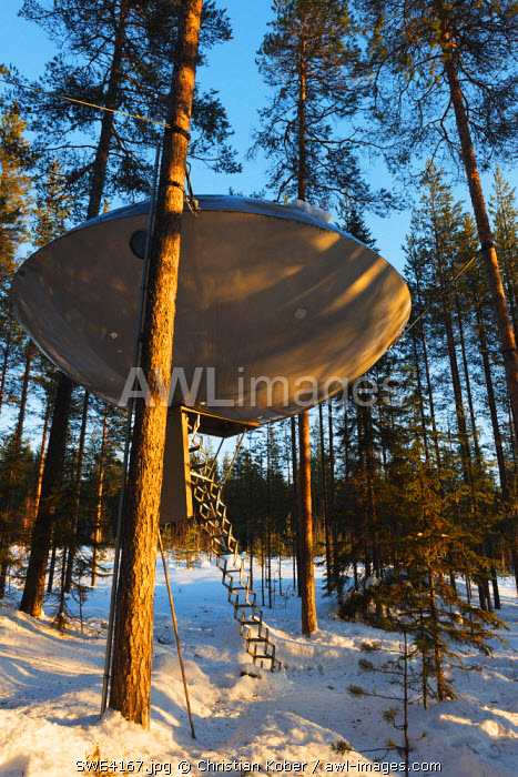 awl-images.com - Sweden / Arctic Circle, Lapland, Scandinavia, Sweden, The Tree Hotel, The UFO room